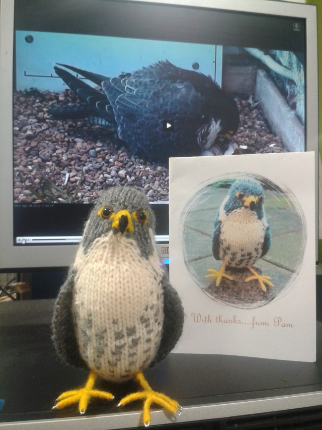 Amazing knitted falcon from Pam Birley!